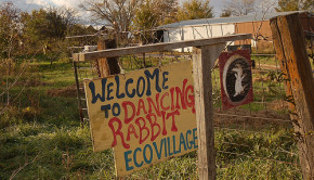 dancing rabbit ecovillage