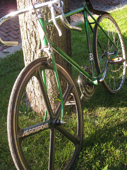 mutt bike