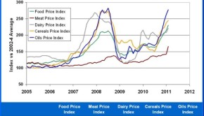 FAO Food Price Index Values Jan-2011