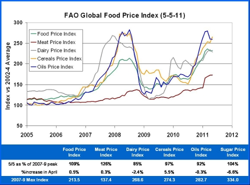 global food prices on the rise essay Factors influencing the supply of rice in factor underpinning the rise in global food prices wish to have the essay published on the uk.