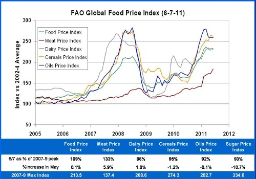 FAO Food Price Index 6-7-11