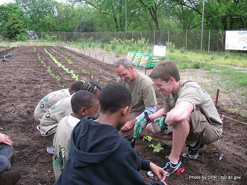 Kids learning to garden in washington, d.c.
