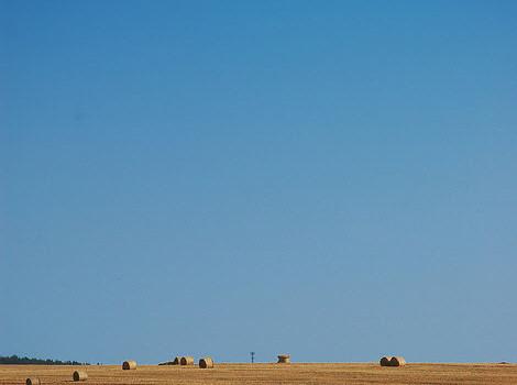 russian hay field