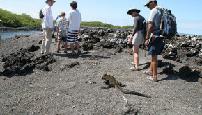 tour group galapagos islands