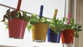 container-gardening-buckets