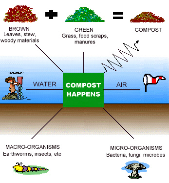how a compost pile works