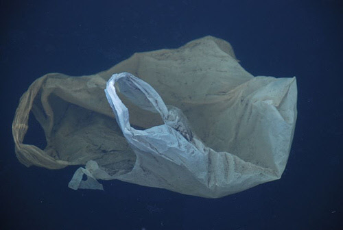 plastic shopping bag in water