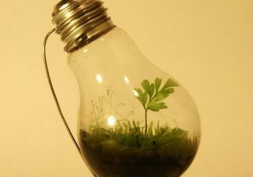 light bulb greenhouse
