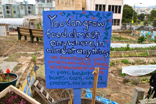 a homemade sign at an urban farm