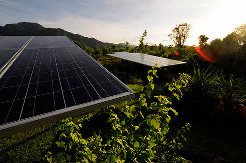 Community-Owned Solar Gardens Make Clean Energy Possible for All