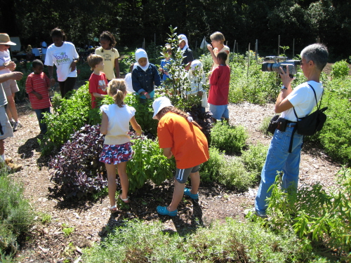 filming family gardeners at a community garden in washington dc