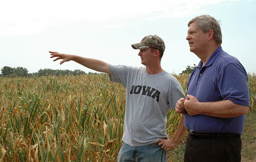 secretary vilsack sees crops destroyed by drought