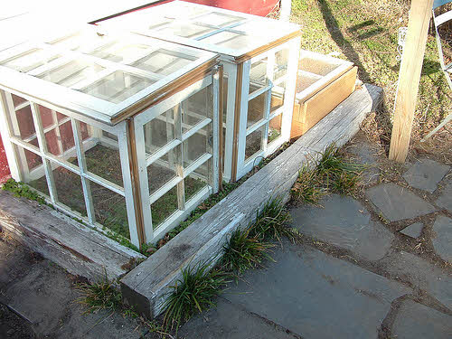 Backyard Greenhouse Winter : Keep Your Gardening Space Healthy in Winter