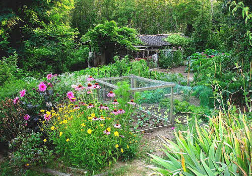 flower and vegetable garden