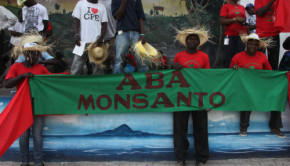 Monsanto protest-Minsky