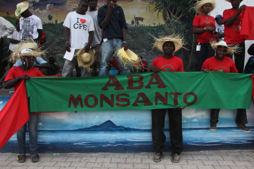 via campasina monsanto protest