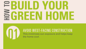 build your green home infographic