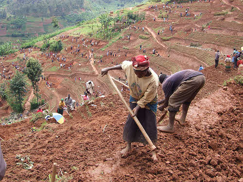 soil erosion prevention project in rwanda
