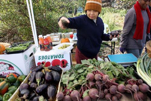 Bissel Gardens Market