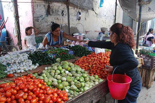 xoxocotla market
