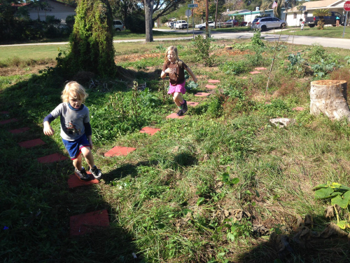 sean law front yard food forest