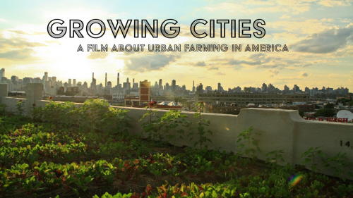 growing cities documentary