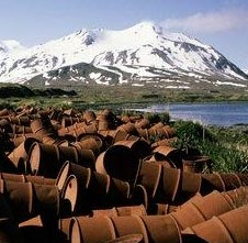 an essay on oil and arctic national wildlife refuge or anwr Drilling in the arctic national wildlife refuge (anwr)  this essay will explore  the arguments for and against drilling and development in the  the united  states has become increasingly dependent on foreign oil over the last one  hundred.