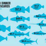 bycatch from us fisheries