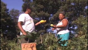 Community Gardens Provide More than Food in DC