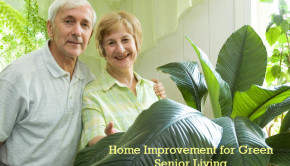home improvement tips for green seniors