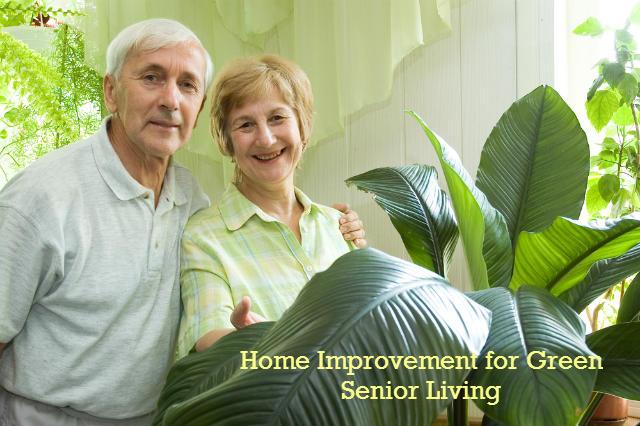 home improvement tips for green seniors