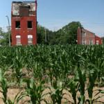 north saint louis farming community