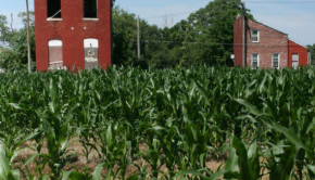 north saint louis farming community