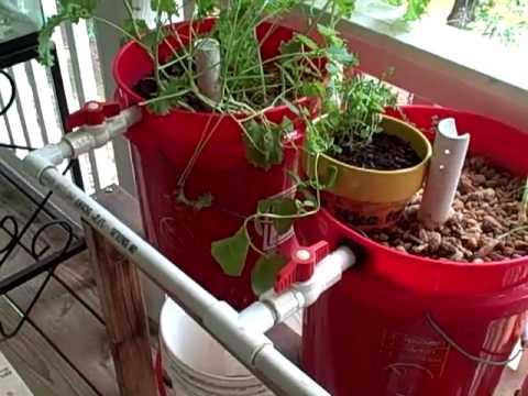 Diy aquaponics six plans for the backyard tinkerer for Balcony aquaponics