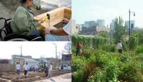 Urban Agriculture in Chicago