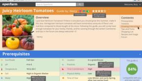 gardening ideas in openfarm guide format