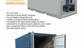 shipping containters infographic