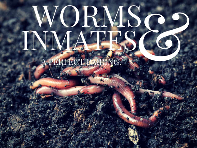 vermicomposting in prison