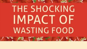 food waste facts infographic selection