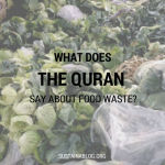 what does the quran say about food waste?