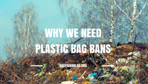 why we need a plastic bag ban