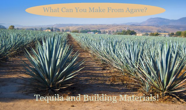 agave waste can be used to make composite lumber