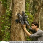 illegal logging sensor made of used cell phones