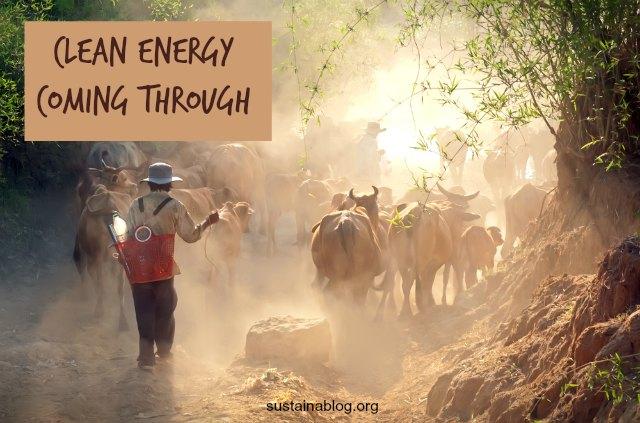 vietnamese farm animals waste to energy