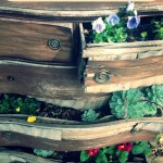 diy planter made from old chest of drawers