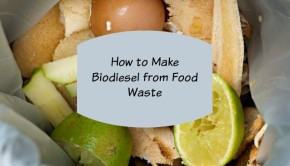how to make biodiesel from food waste