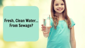 drinking water from sewage because of the california drought