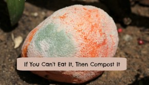 if you can't eat it, then use it for making compost