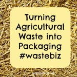 wheat straw is an agricultural waste product that can be turned into packaging