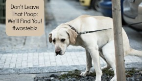don't leave that dog poop behind; we'll find you!